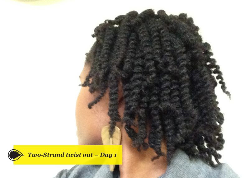6-Natural-Hair-Journey-Afri-love-Twist-Outs