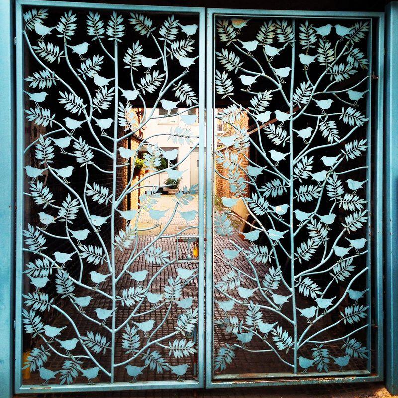 Flora Fauna Iron Gate